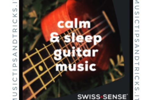 Calm & Sleep Guitar - Swiss Sense Spotify Playlist of the Month - December 2018